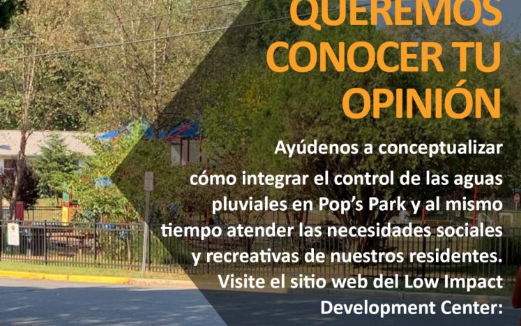 Pop's Park survey